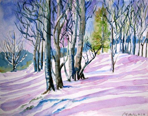 Winter im Voralpenland