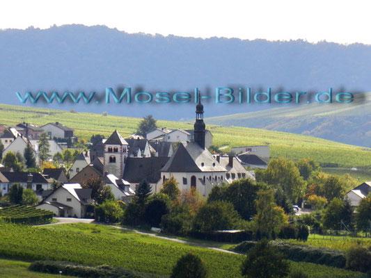 Brauneberg-Filzen