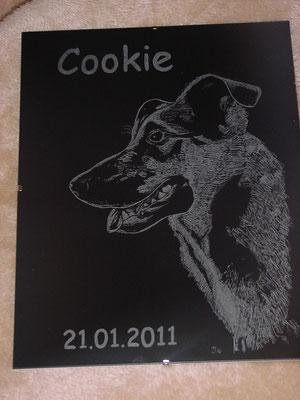 """Cookie"""