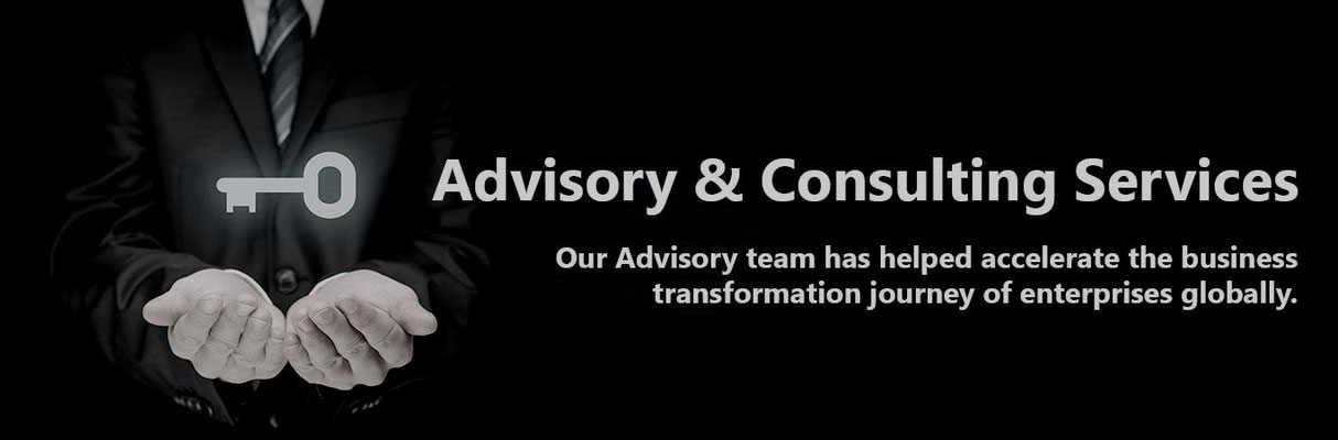 Advisory and consultancy support services
