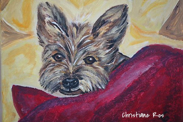 "Porträt Yorkshire Terrier ""Pascal"" - Acryl - 20 X 30 cm (vergeben)"