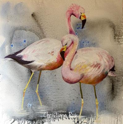 Flamingos - Acryl mit Öl - 60 X 60 cm