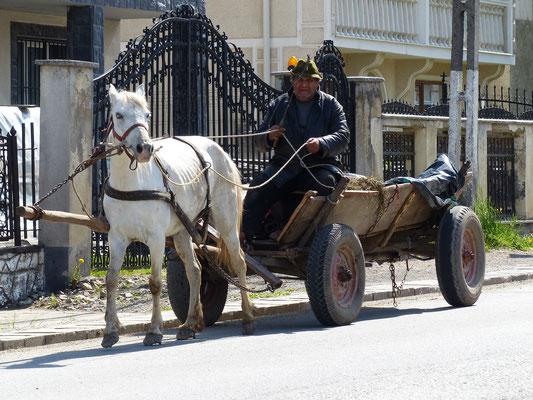 In Rumänien stets präsent: die Pferdewagen (Mai 2017)