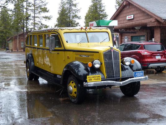 USA 2015: Dieser White Omnibus aus den Dreißigern fährt als Touristenbus im Yellowstone Nationalpark