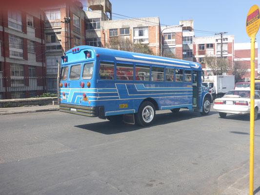 die Aufbauten liefert der brasiliansche Busriese Irazar, montiert zumeist in Bolivien