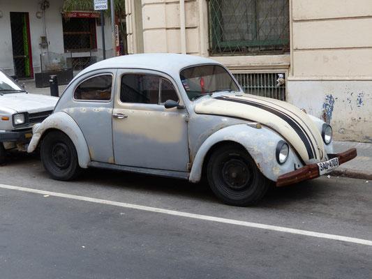 Uruguay 2013: läuft und läuft und läuft - Käfer aus brasiliansicher Produktion
