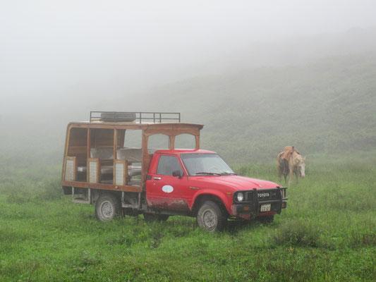 "Galapagos (Ecuador) 2009: Toyota Hilux ""Minibus"""