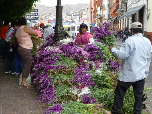 vente de fleurs pour Dolores