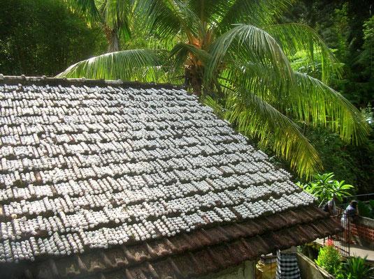 toit de coquillages