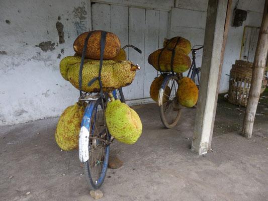 vélo jacquier