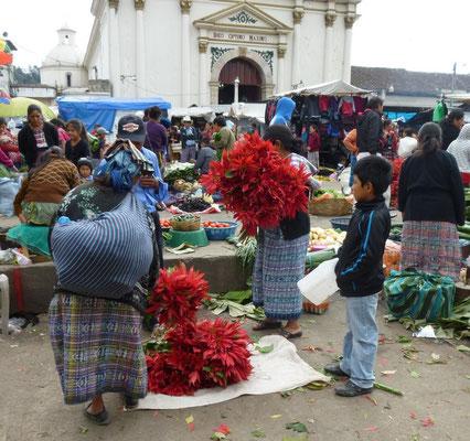 Petit vendeur de fleurs à Momostenango