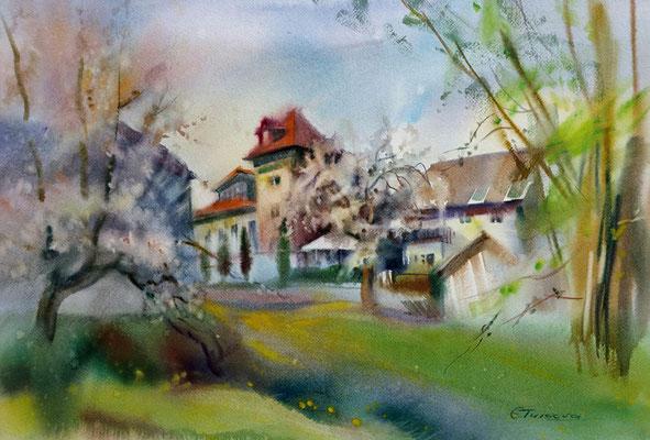"""Весна в Асбахе"" 45х56, 2016"