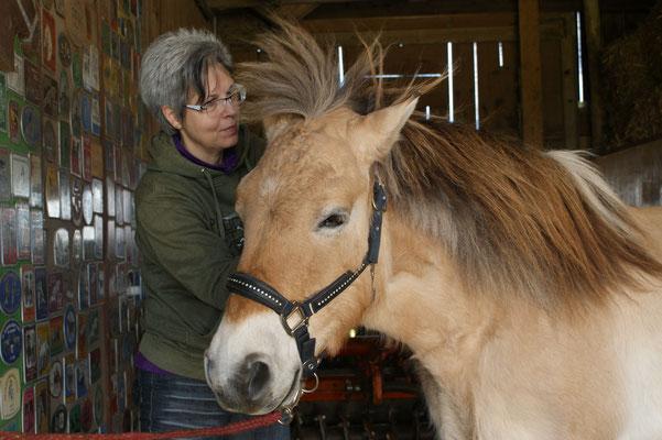 das 23jährige Pony hat in seiner Vergangenheit nicht nur gute Dinge erfahren