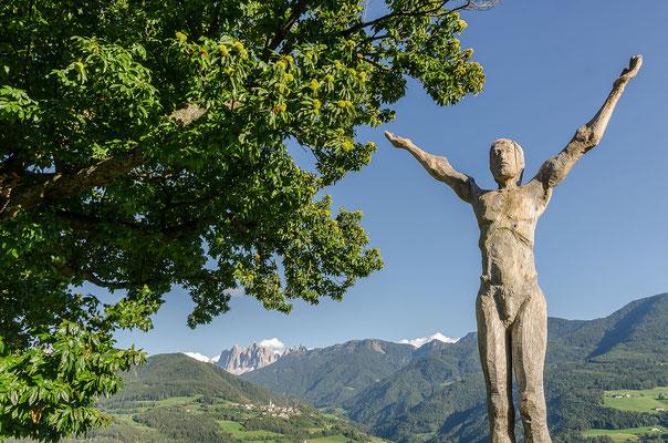 """Der """"Keschtnweg"""" im Eisacktal führt im Schatten von urigen Esskastanienbäumen von Brixen bis in den Bozener Talkessel"""