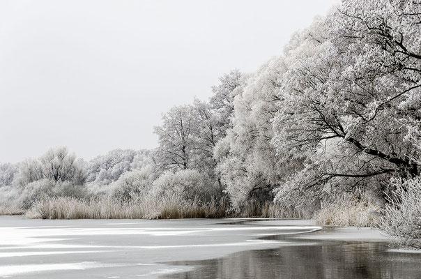 Auch im Winter bietet das Steinhuder Meer zauberhafte Anblicke