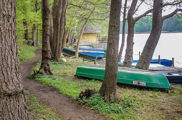 """Wanderweg """"Auf dem Elfenpfad"""" am Neuenkirchener See"""