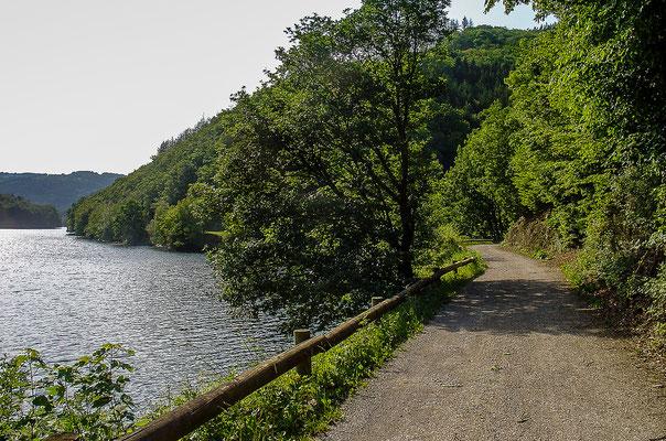 Wanderwege führen direkt am Rur-Stausee entlang