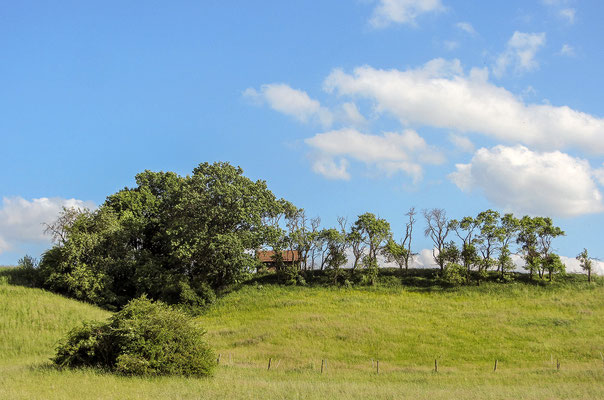 """Blick über Wiesen in der Nähe der Jugendherberge """"Urwald-Life-Camp"""""""