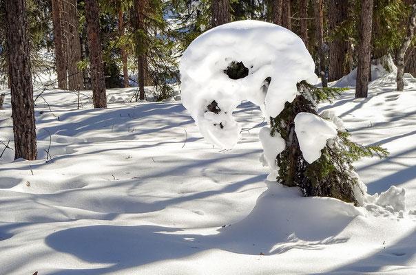 Pompon aus Schnee