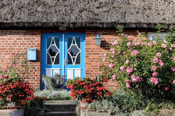 Typisches, mit Reet gedecktes Haus in Groß Zicker