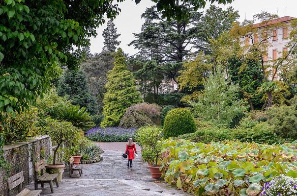 Botanischer Garten bei Intra