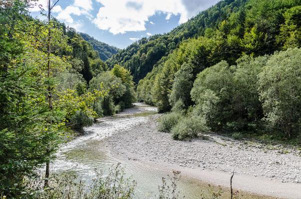 Der Große Bach beim Wildnistrail Buchensteig