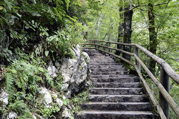 Diese Stufen führen zum viel besuchten Savica-Wasserfall