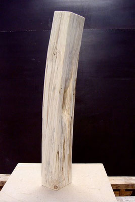 Neigung  Inclination, Birke birch, 2009