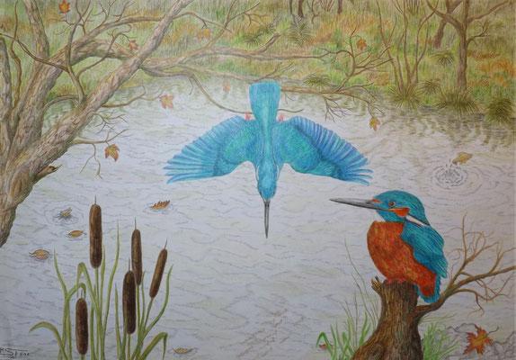 Eisvögel, 29,5 x 42 cm, Wachsstift