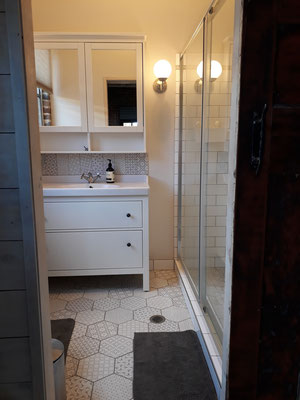Bathroom (toilet, vanity, shower) for use by Family Suite (located in main house)
