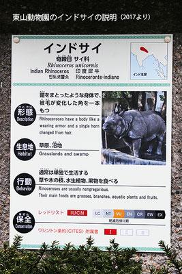 東山動物園のインドサイの説明①