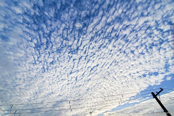 巻層雲(いわし雲)