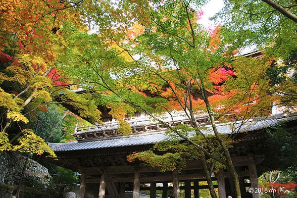 永源寺の山門(滋賀県)