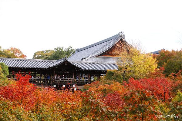 東福寺の入口より通天橋(紅葉)