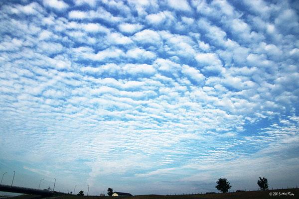 さば雲(いわし雲)日中