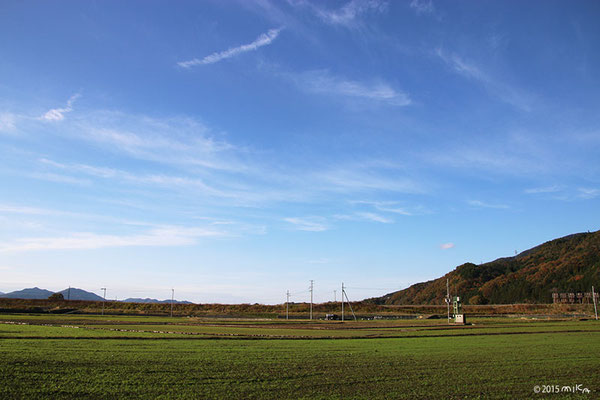 11月末頃の田畑(亀岡)