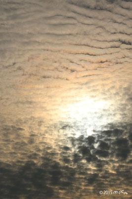 高積雲(ぶあつい波状)夕方