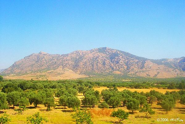 パムッカレ周辺の山々