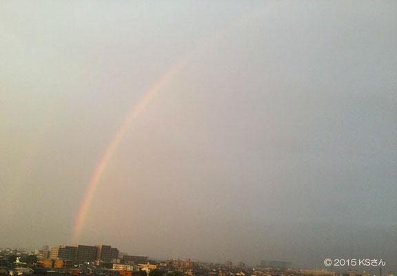 「虹が出たよ」東の空(2015年9月17日17時55分頃)大阪府KSさん