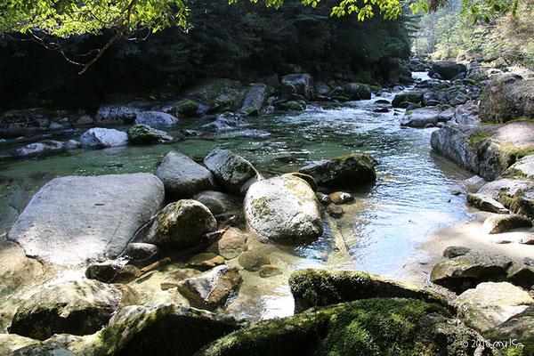 川辺でひなたぼっこ(ヤクスギランド)