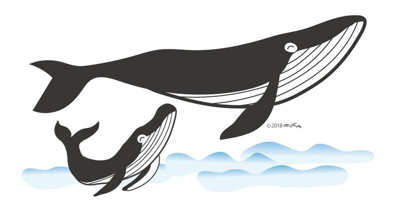 シロナガスクジラの親子