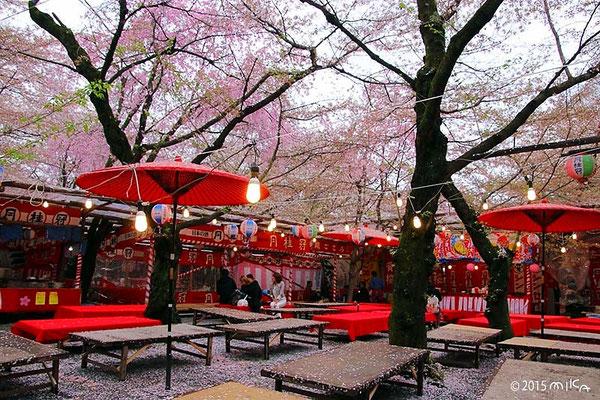 平野神社の屋台