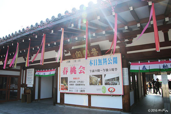 三十三間堂の入口(春桃会にて)