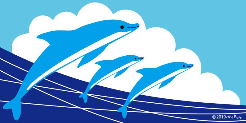 イルカ海からジャンプ(3頭)