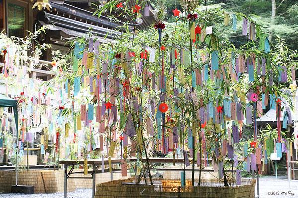 七夕笹飾り③(貴船神社)