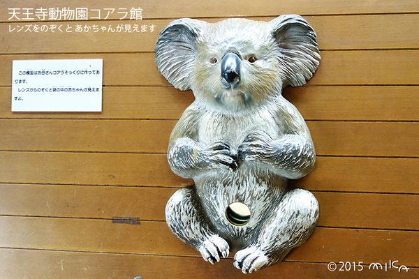 レンズをのぞくと赤ちゃん(天王寺動物園2015年)