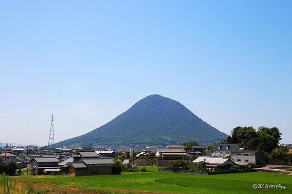 讃岐富士(水田側より)