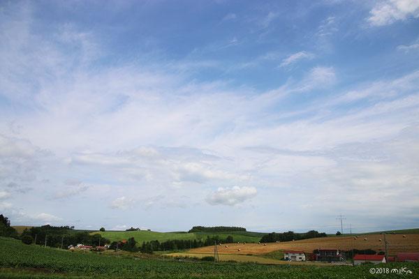 麦稈ロールの見える丘
