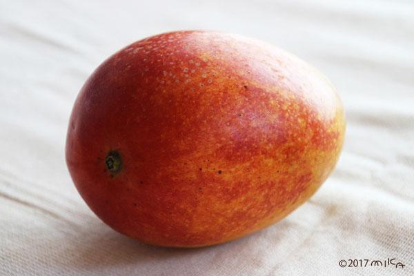 マンゴーの実