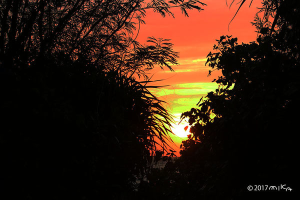 夕陽の浜に続く道(池間島)